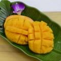 沖縄産マンゴーの切り方