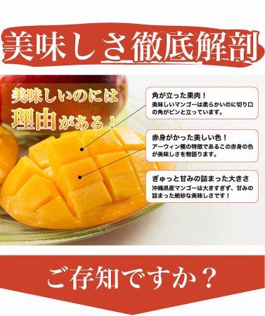 激安沖縄産マンゴー